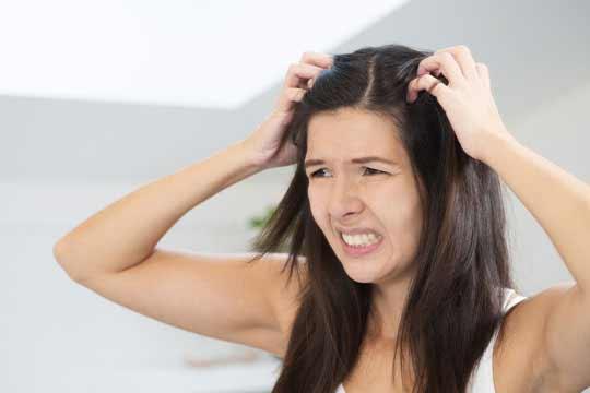 hausmittel gegen trockene haare tipps aus der natur